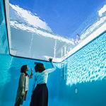 【金沢で現代美術を感じる】金沢21世紀美術館へ行こう